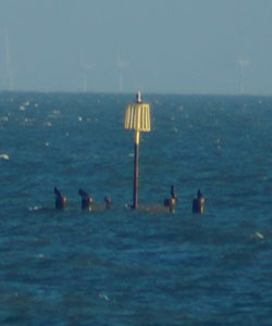 Herne Bay Outfall