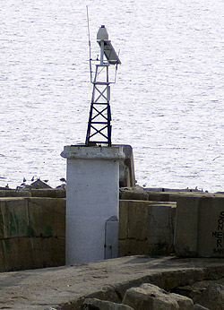 Oyster Fishermans Shelter E Breakwater Head